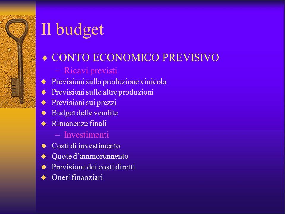 Il budget CONTO ECONOMICO PREVISIVO Ricavi previsti Investimenti