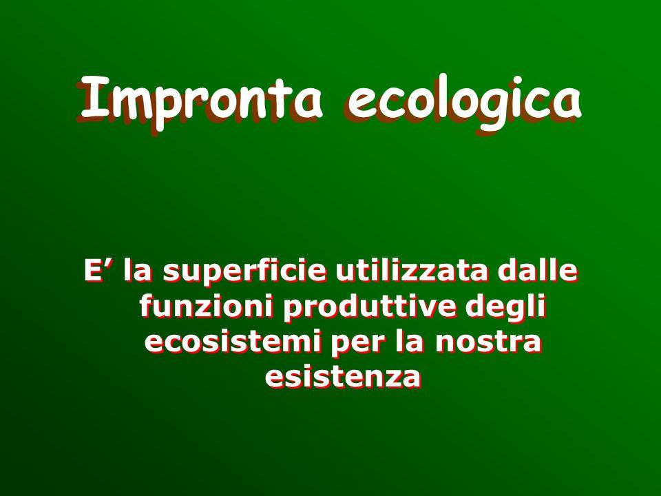 Impronta ecologica E' la superficie utilizzata dalle funzioni produttive degli ecosistemi per la nostra esistenza.