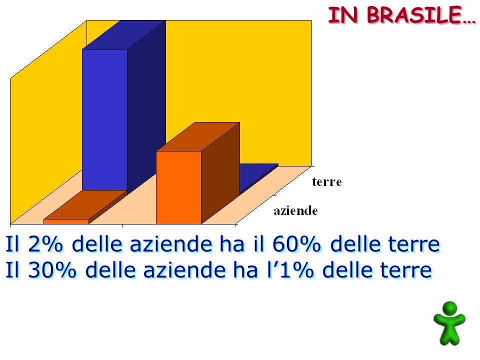 IN BRASILE… Il 2% delle aziende ha il 60% delle terre Il 30% delle aziende ha l'1% delle terre
