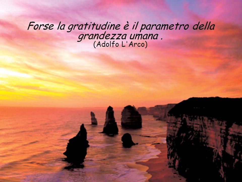 Forse la gratitudine è il parametro della grandezza umana