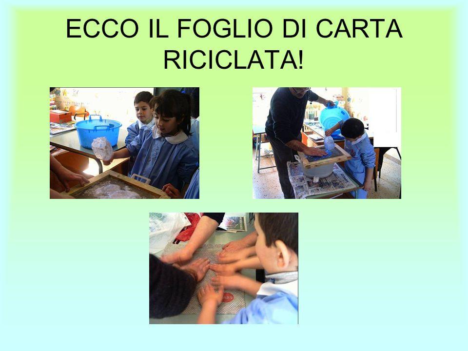 ECCO IL FOGLIO DI CARTA RICICLATA!