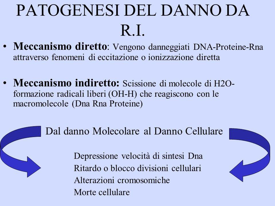 PATOGENESI DEL DANNO DA R.I.