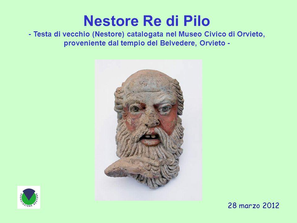 Nestore Re di Pilo- Testa di vecchio (Nestore) catalogata nel Museo Civico di Orvieto, proveniente dal tempio del Belvedere, Orvieto -