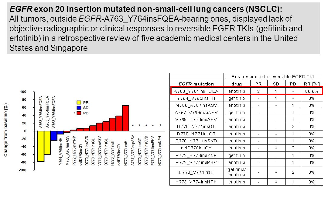 EGFR exon 20 insertion mutated non-small-cell lung cancers (NSCLC):