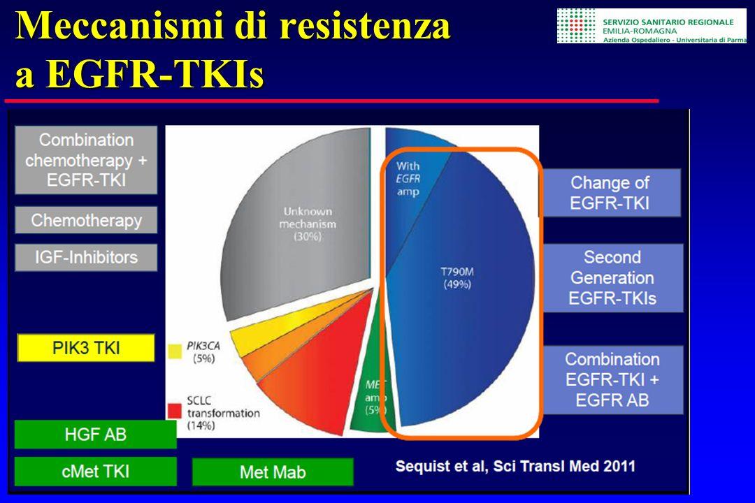 Meccanismi di resistenza a EGFR-TKIs