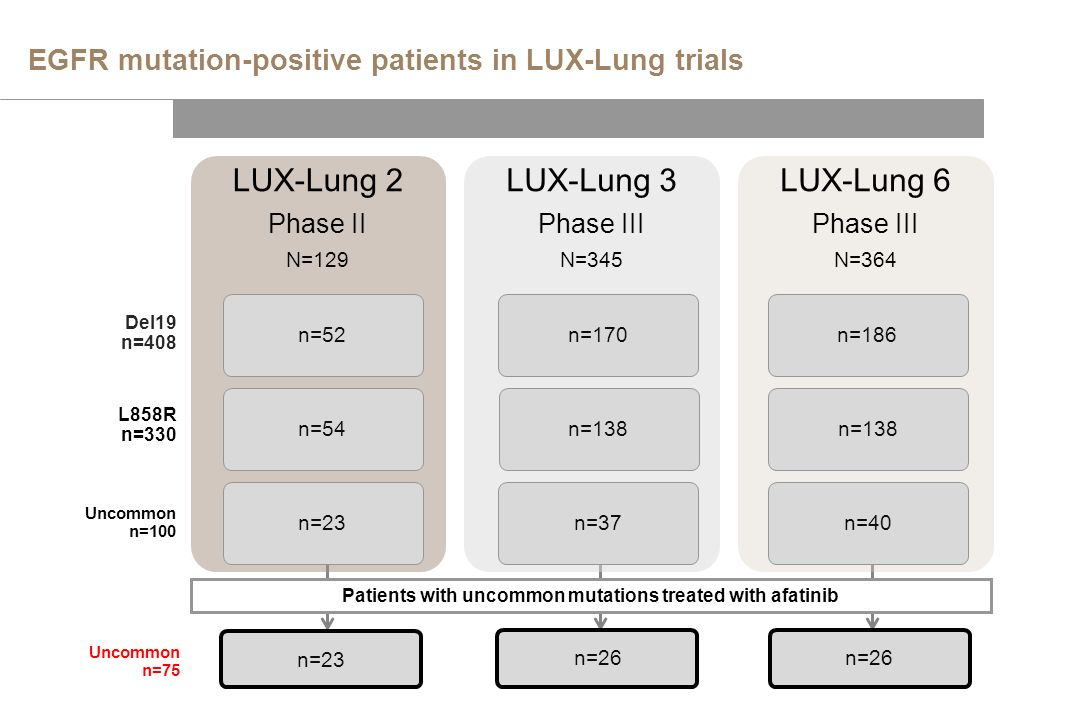 EGFR mutation-positive patients in LUX-Lung trials