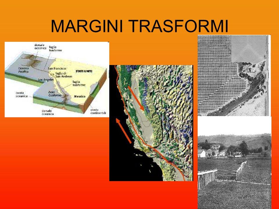 MARGINI TRASFORMI