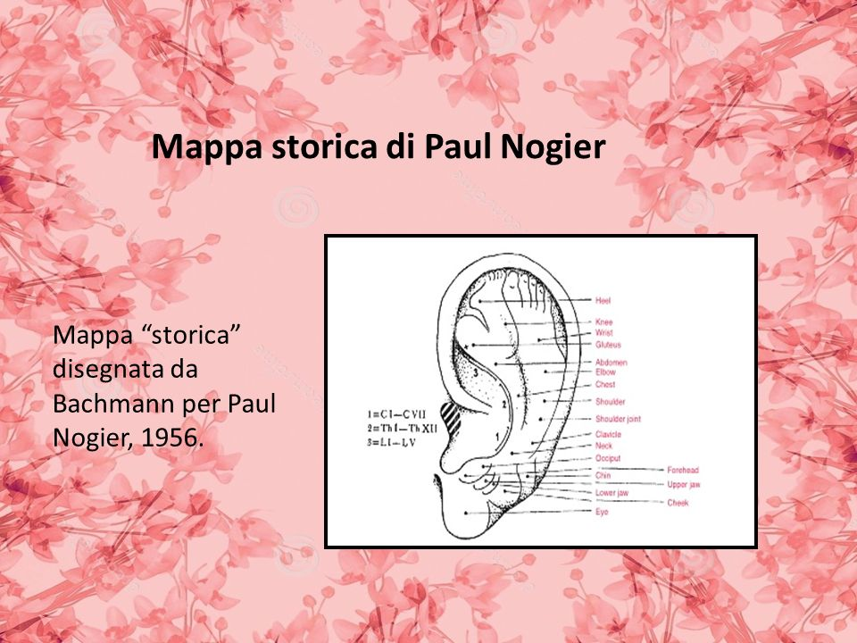 Mappa storica di Paul Nogier