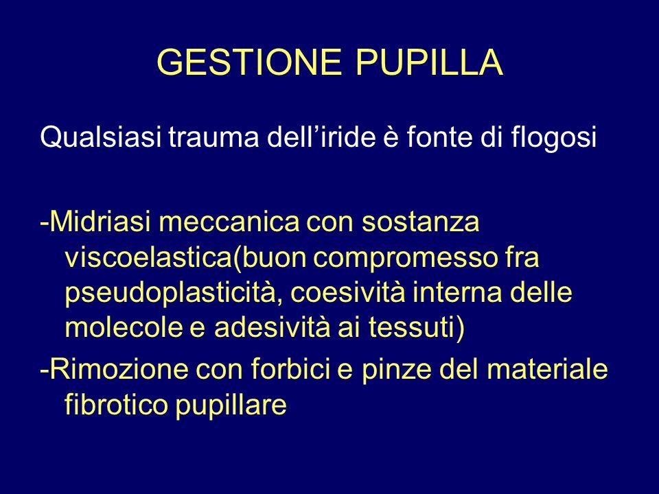 GESTIONE PUPILLA