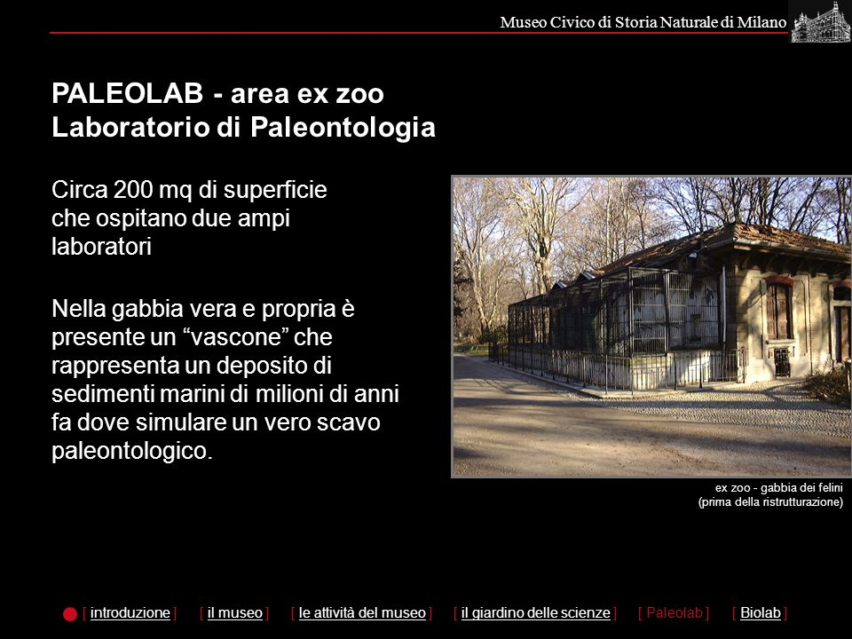 PALEOLAB - area ex zoo Laboratorio di Paleontologia