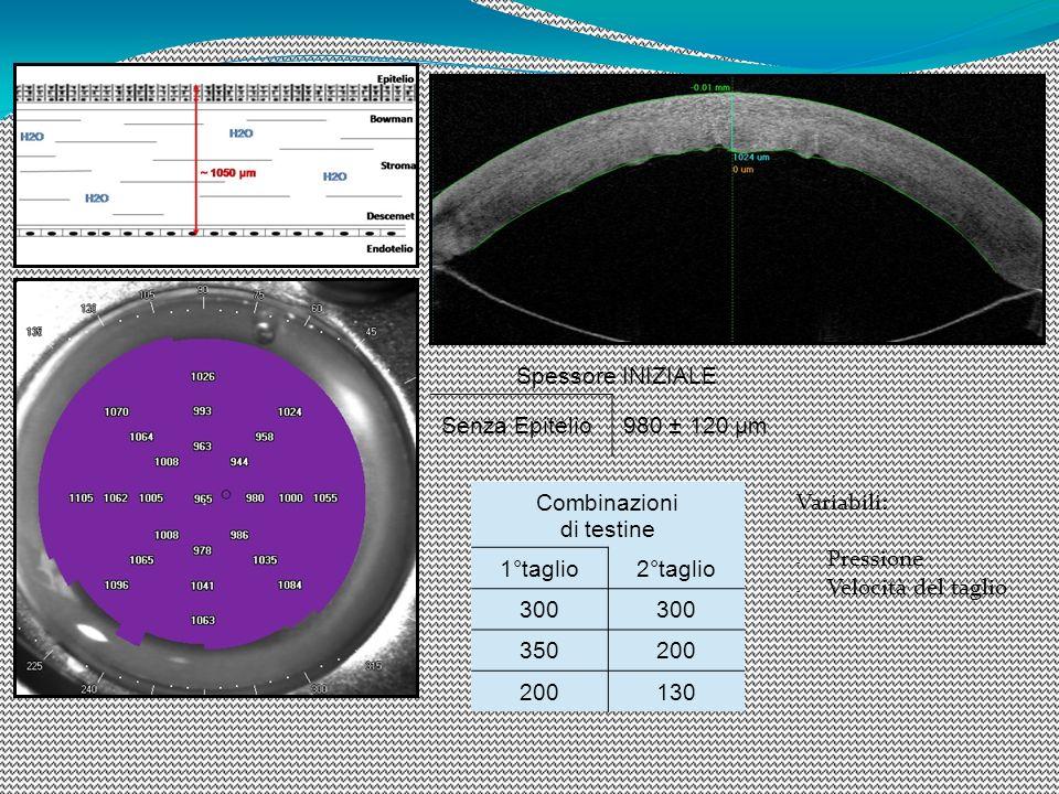 Spessore INIZIALE Senza Epitelio. 980 ± 120 µm. Combinazioni. di testine. 1°taglio. 2°taglio. 300.