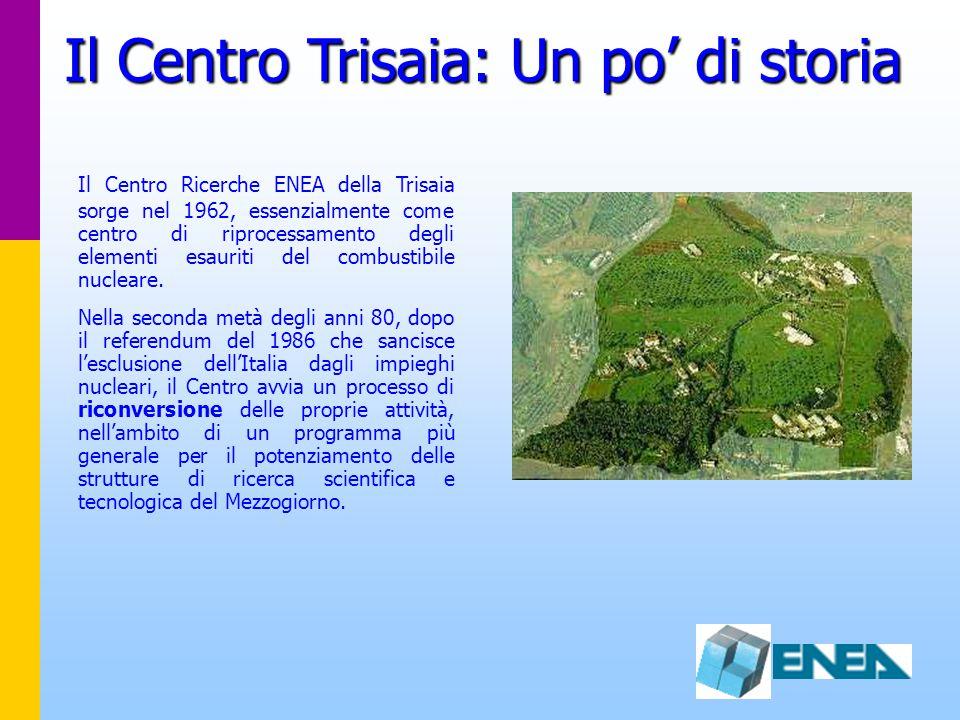 Il Centro Trisaia: Un po' di storia