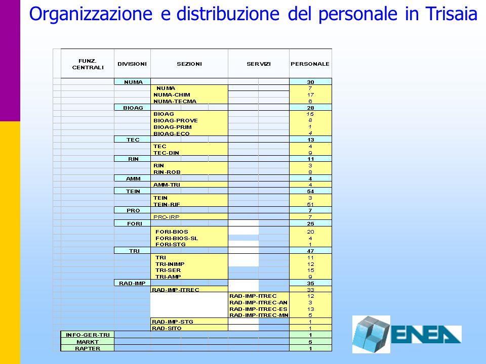 Organizzazione e distribuzione del personale in Trisaia