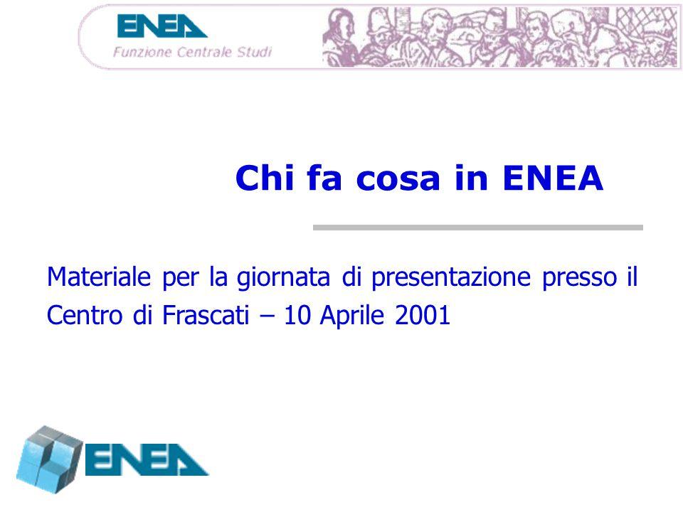 Chi fa cosa in ENEA Materiale per la giornata di presentazione presso il.