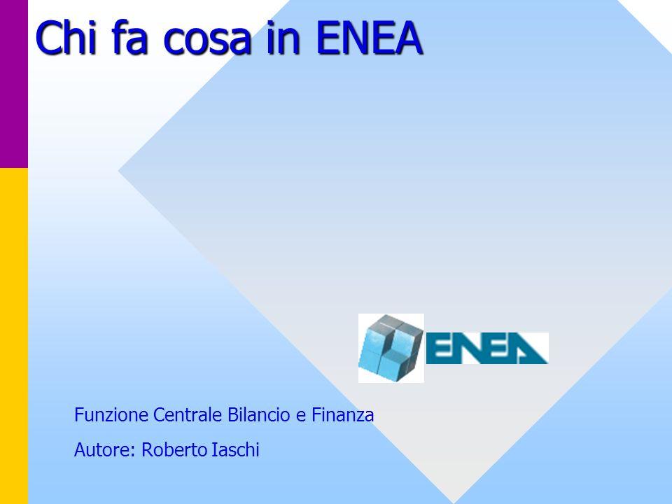 Chi fa cosa in ENEA Funzione Centrale Bilancio e Finanza