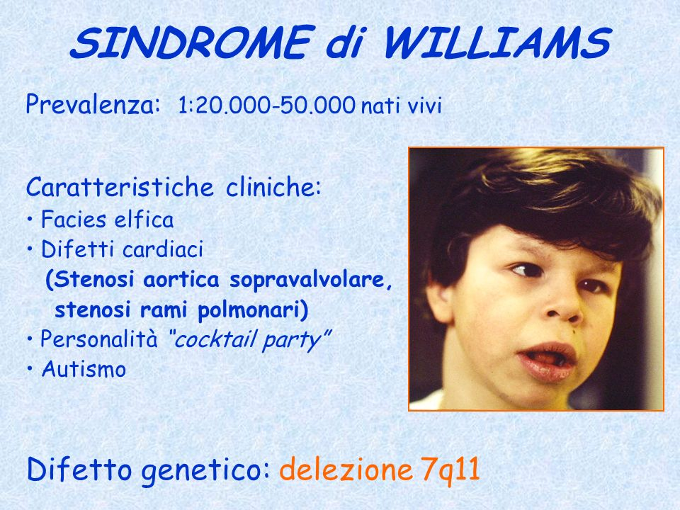 SINDROME di WILLIAMS Difetto genetico: delezione 7q11