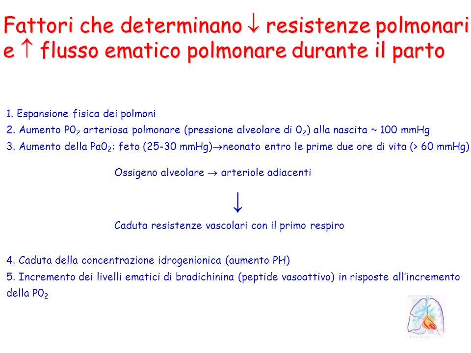 ↓ Fattori che determinano  resistenze polmonari