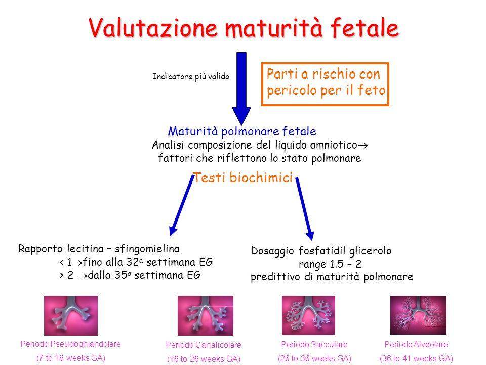 Valutazione maturità fetale