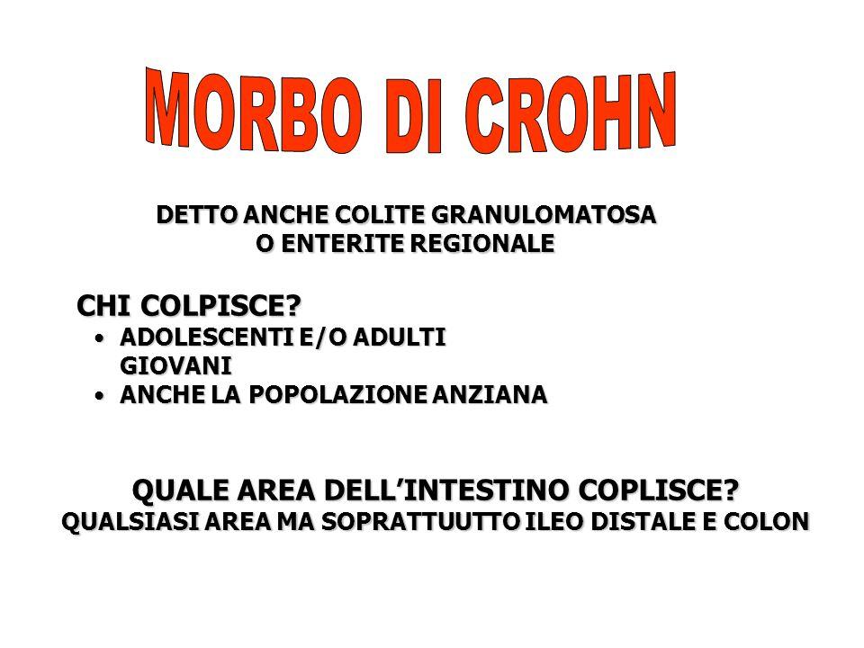 MORBO DI CROHN CHI COLPISCE QUALE AREA DELL'INTESTINO COPLISCE
