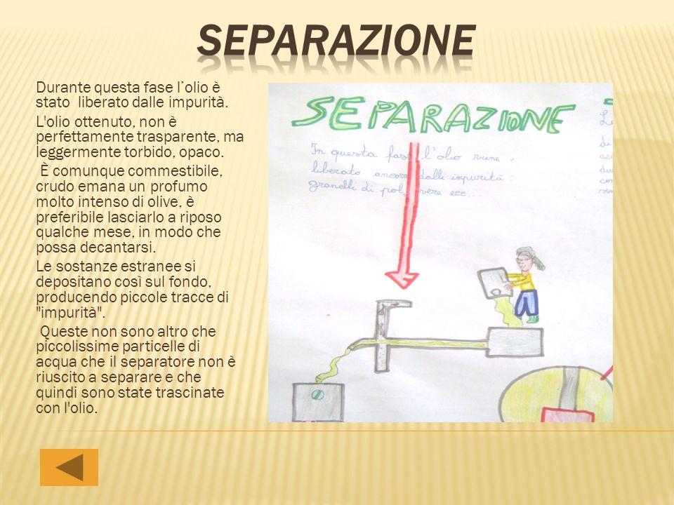 separazione Durante questa fase l'olio è stato liberato dalle impurità.