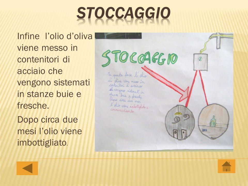 stoccaggio Infine l'olio d'oliva viene messo in contenitori di acciaio che vengono sistemati in stanze buie e fresche.