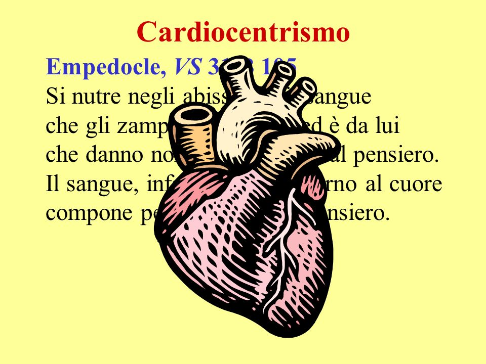 Cardiocentrismo Empedocle, VS 31 B 105