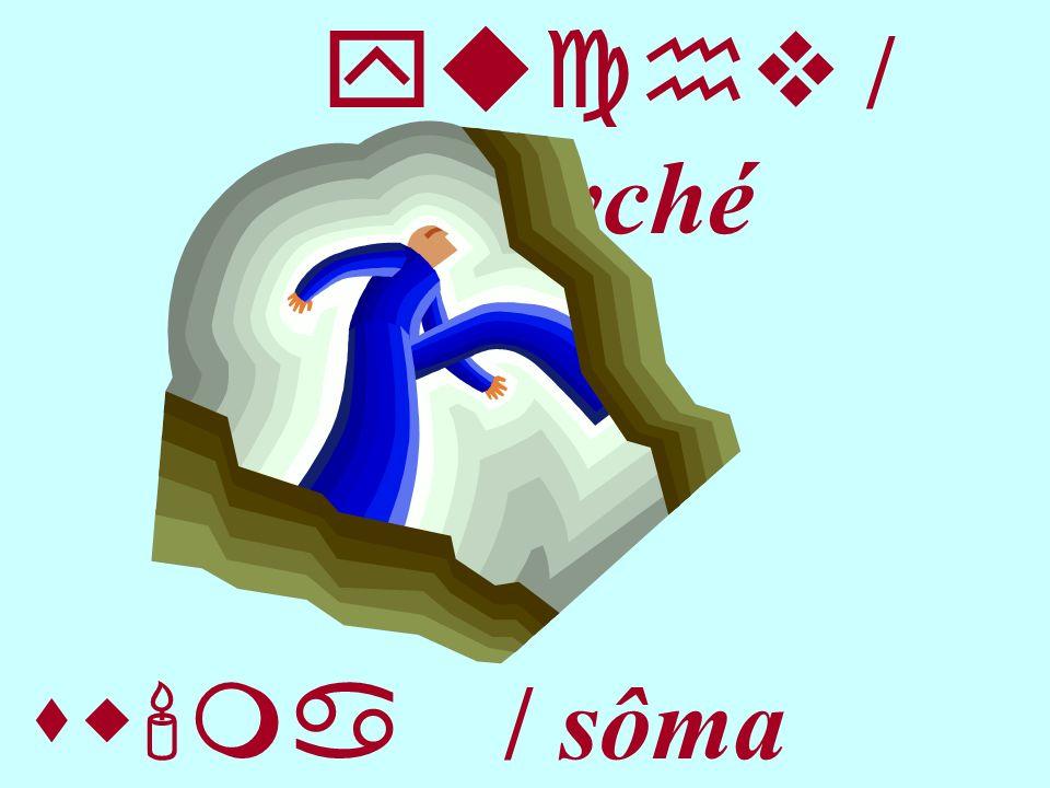 yuchv / psyché sw ma / sôma