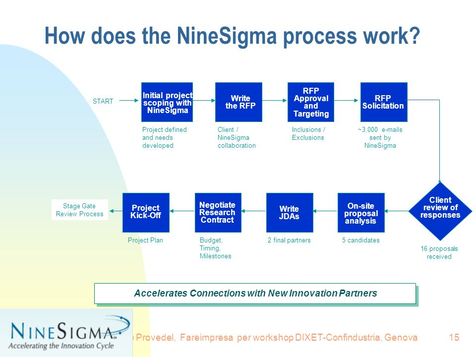 How does the NineSigma process work