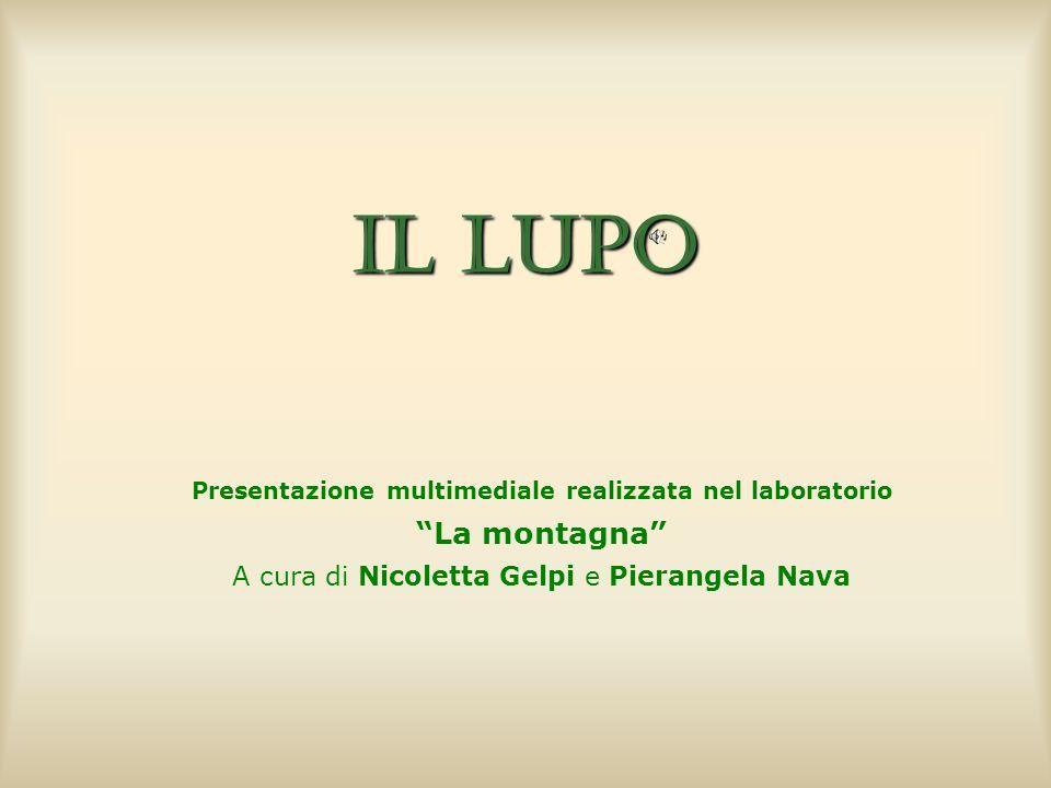 Presentazione multimediale realizzata nel laboratorio