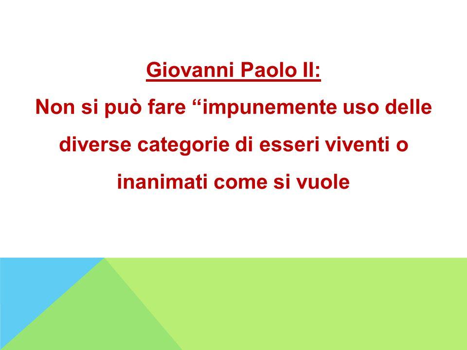 Giovanni Paolo II: Non si può fare impunemente uso delle diverse categorie di esseri viventi o inanimati come si vuole.