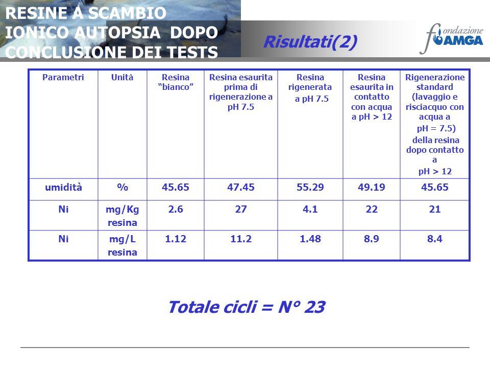 RESINE A SCAMBIO IONICO AUTOPSIA DOPO CONCLUSIONE DEI TESTS