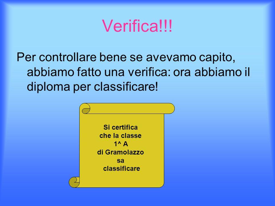 Verifica!!!Per controllare bene se avevamo capito, abbiamo fatto una verifica: ora abbiamo il diploma per classificare!