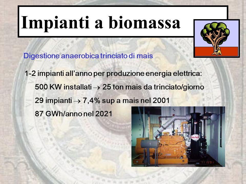 Impianti a biomassa Digestione anaerobica trinciato di mais