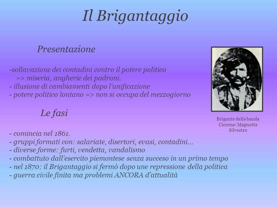 Ciccone: Magnotta Silvestro