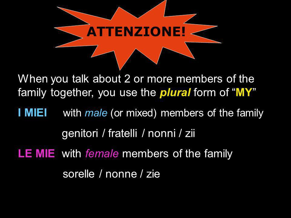ATTENZIONE! When you talk about 2 or more members of the family together, you use the plural form of MY