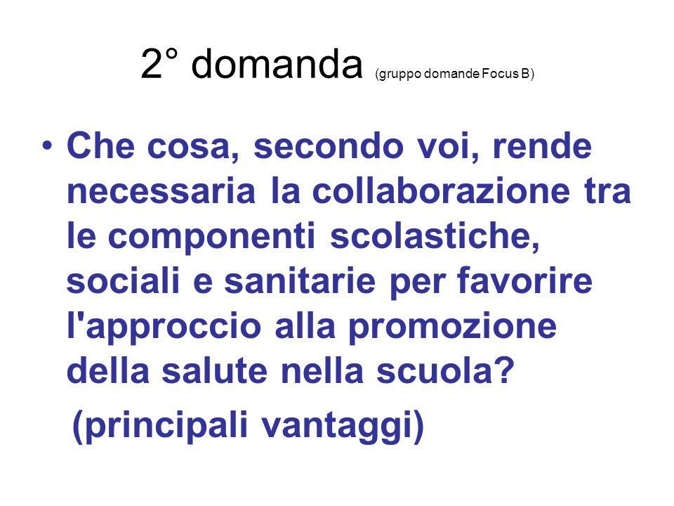 2° domanda (gruppo domande Focus B)