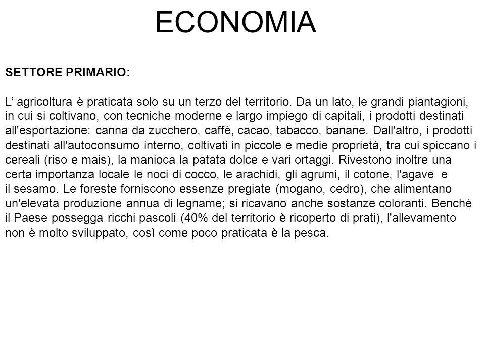 ECONOMIA SETTORE PRIMARIO:
