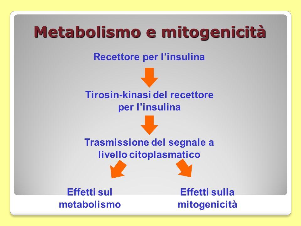 Metabolismo e mitogenicità