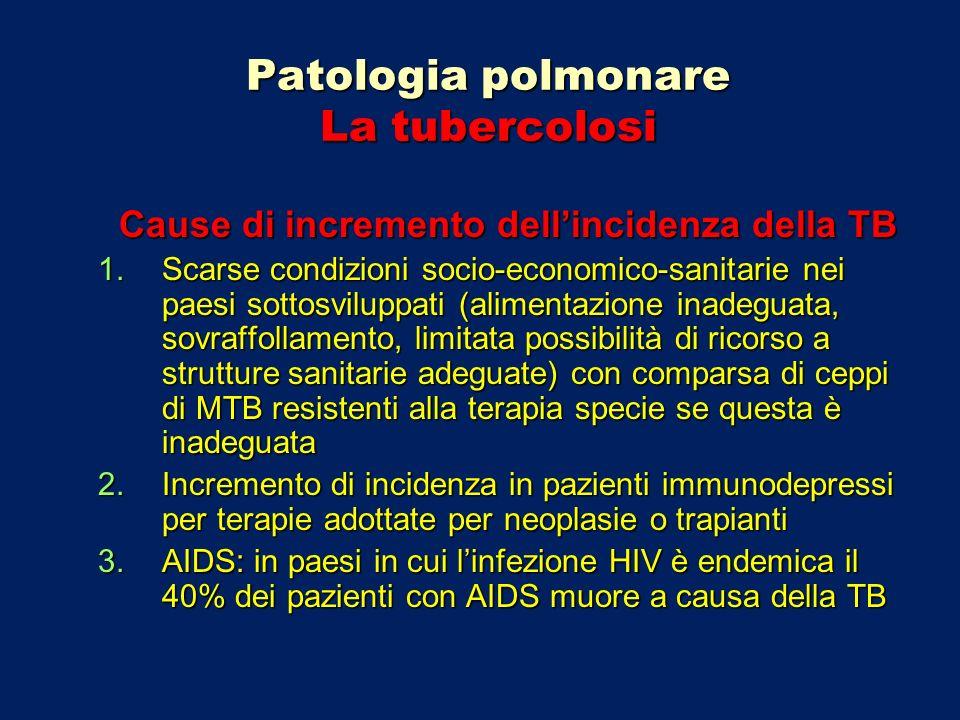 Patologia polmonare La tubercolosi