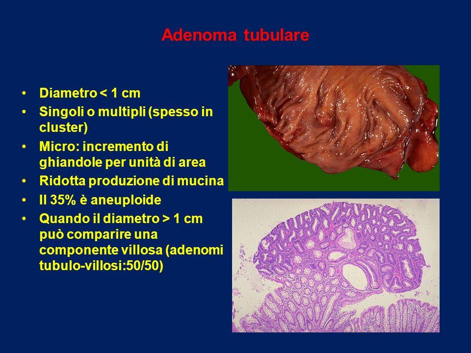 Adenoma tubulare Diametro < 1 cm