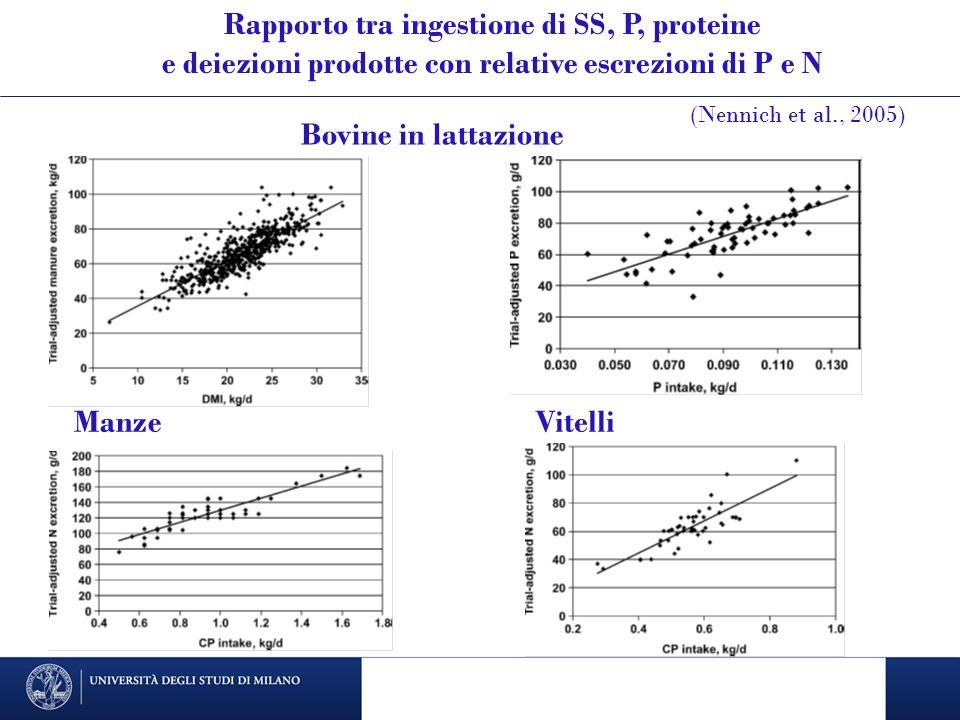Rapporto tra ingestione di SS, P, proteine