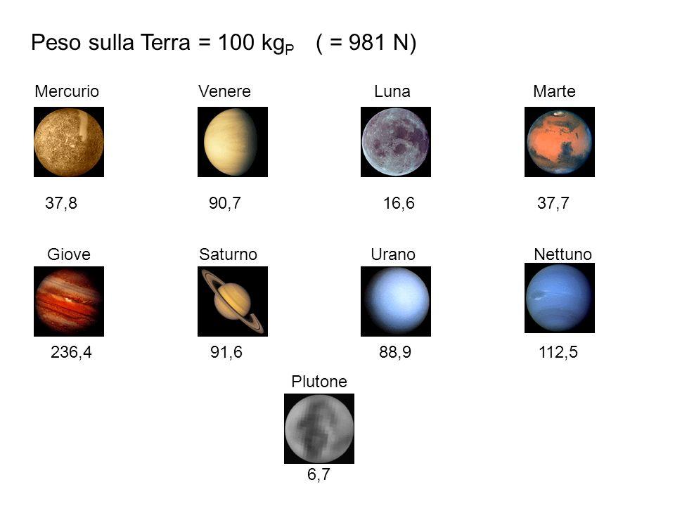 Peso sulla Terra = 100 kgP ( = 981 N)