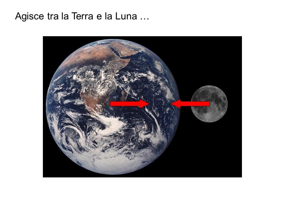 Agisce tra la Terra e la Luna …