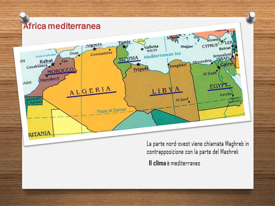 Africa mediterranea La parte nord-ovest viene chiamata Maghreb in contrapposizione con la parte del Mashrek.
