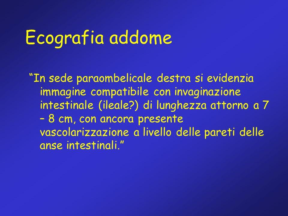 Ecografia addome