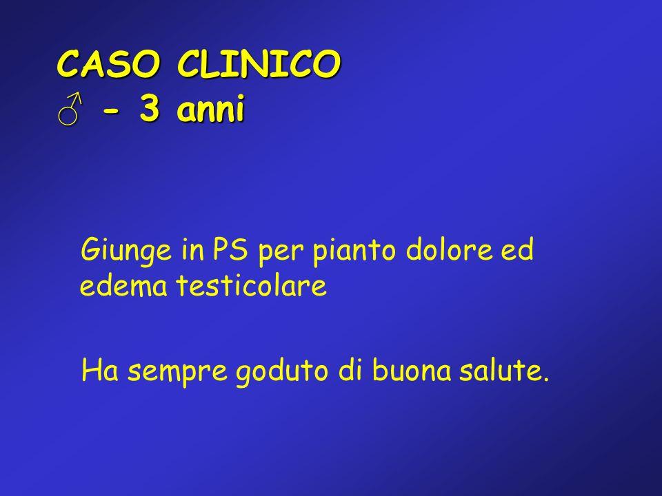 CASO CLINICO ♂ - 3 anni Giunge in PS per pianto dolore ed edema testicolare.
