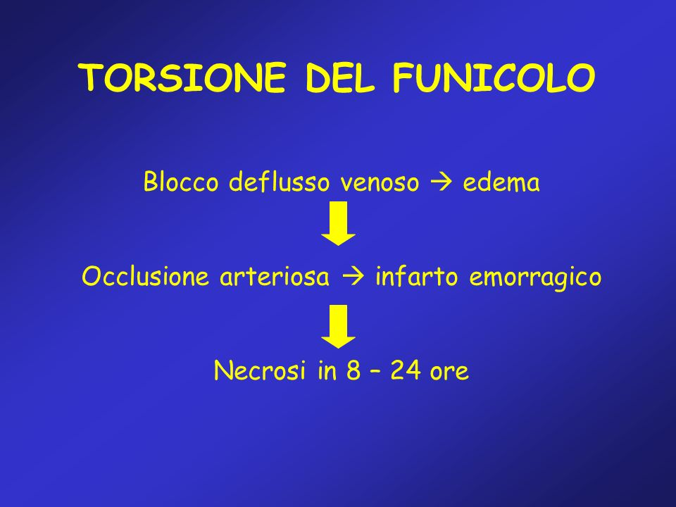 TORSIONE DEL FUNICOLO Blocco deflusso venoso  edema
