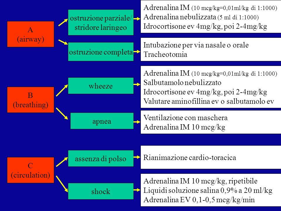 Adrenalina IM (10 mcg/kg=0,01ml/kg di 1:1000)
