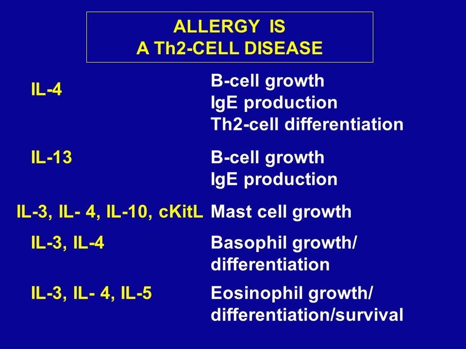 ALLERGY IS A Th2-CELL DISEASE. B-cell growth. IgE production. Th2-cell differentiation. IL-4. IL-13.