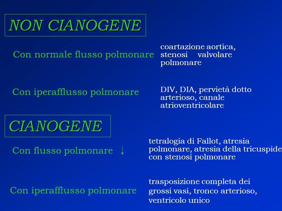 NON CIANOGENE CIANOGENE Con normale flusso polmonare